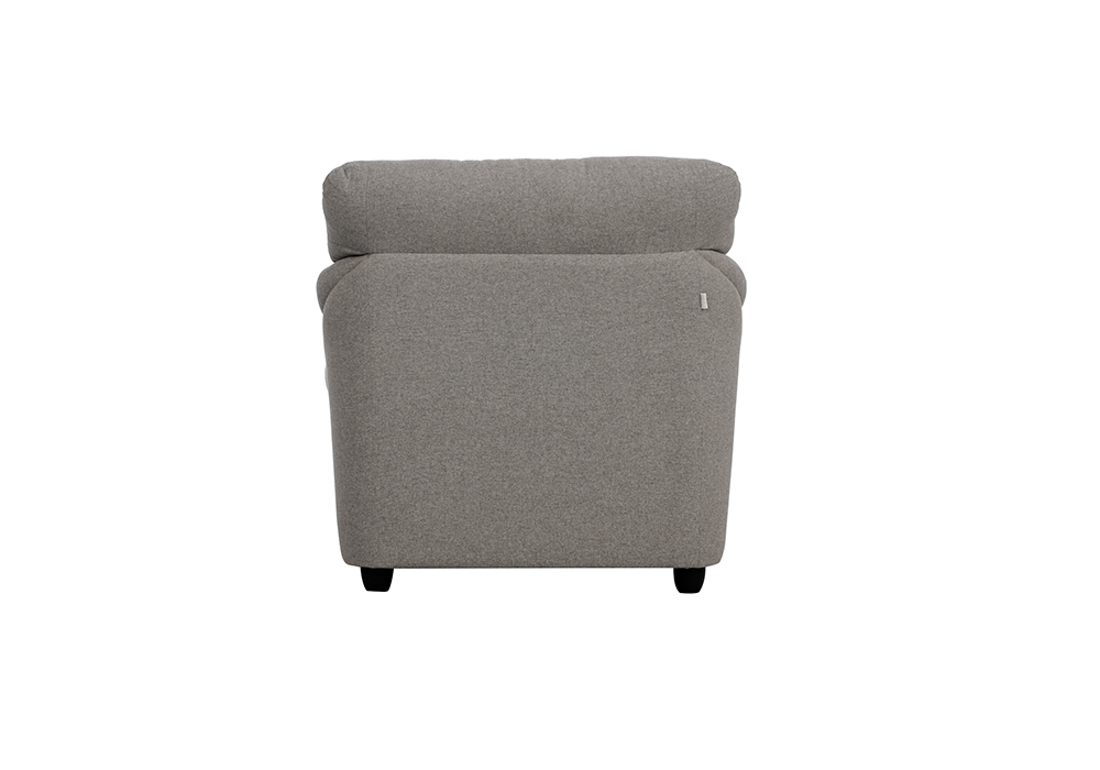 Bangkok-One-Seater-Gray-colour-back-view-Sofa-by-SPNS