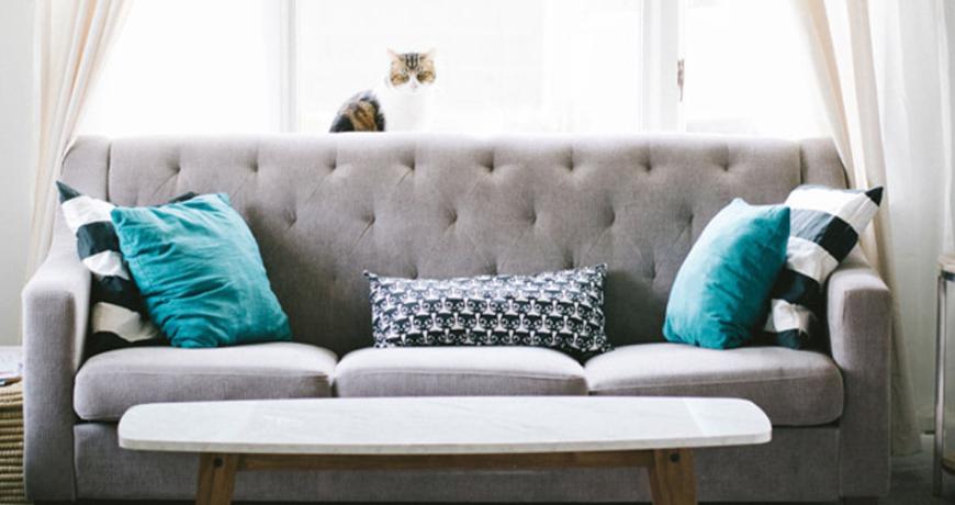 English or Club Sofa Set