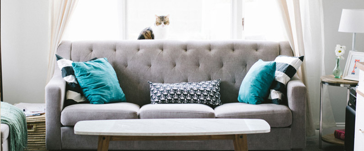 Why Your Sofa Is One Of The Important Furniture Pieces In Your House!