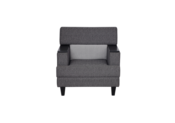 Larch single seater gray colour sofa by Spn Furniture.