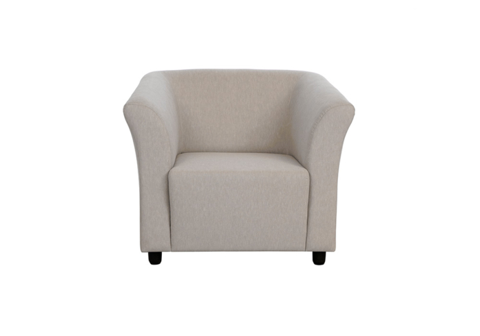 Paris single seater gray colour sofa without cusions by spns (without cusion)