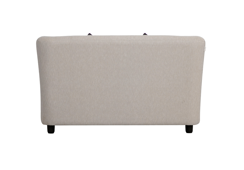 Paris two seater gray colour sofa by spns (back view)