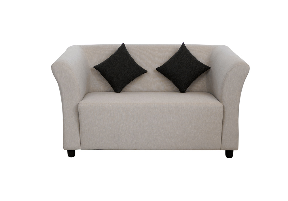 Paris two seater gray colour sofa by spns