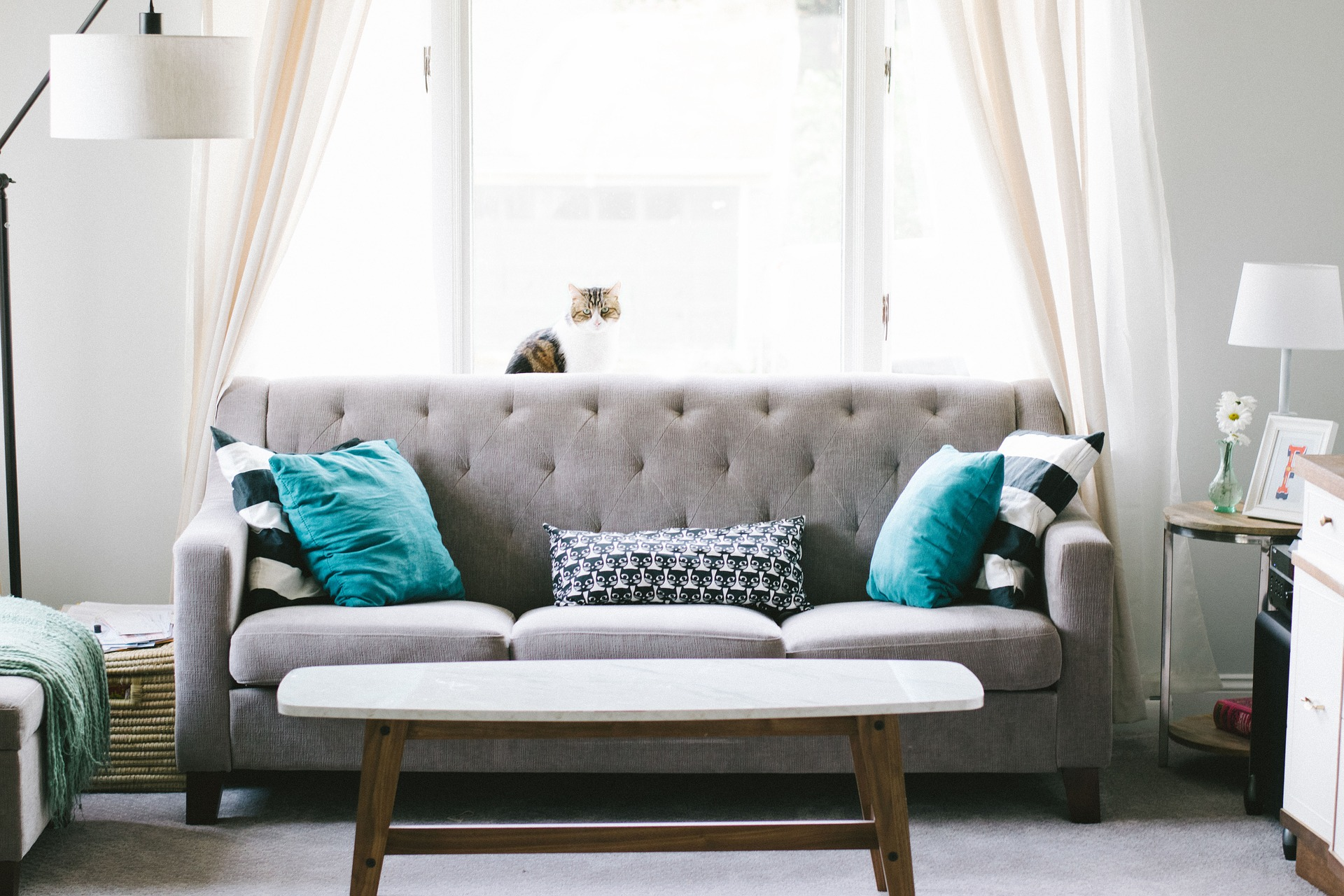 Buy Sofa's that compliment your home decor.